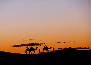 Morocco Camel Trekking Tour